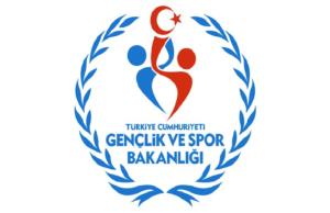 Türkiye Espor Federasyonu Kuruldu