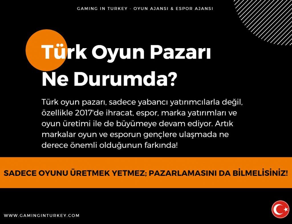 Türkiye Oyun Sektörü Raporu 2017