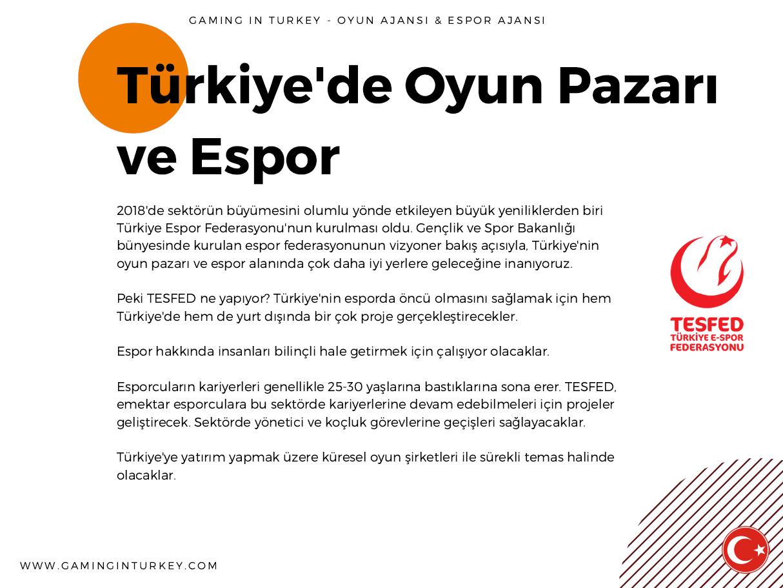 Türkiye Oyun Sektörü 2018 Raporu Yayında